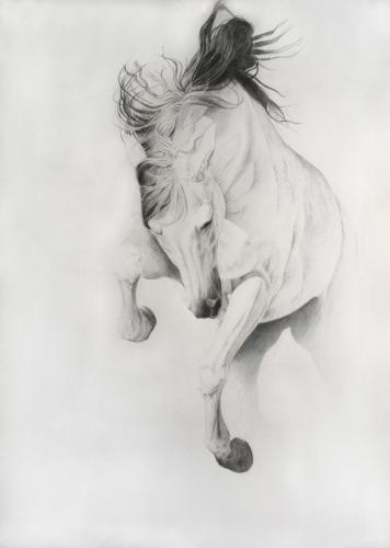 Artwork Levitation