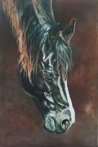 Artwork Black Arab horse