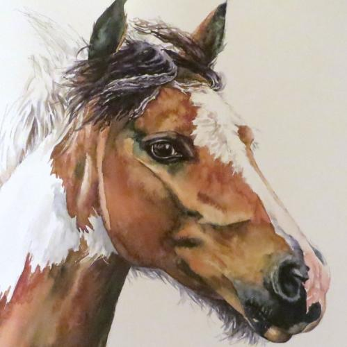Horse head by Louiseportraits - Use the 'Create Similar' button to commission an artist to create your own artwork.