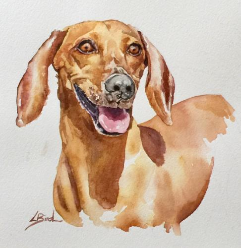 Artwork Sausage dog