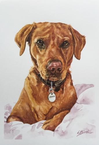 Artwork Jasper