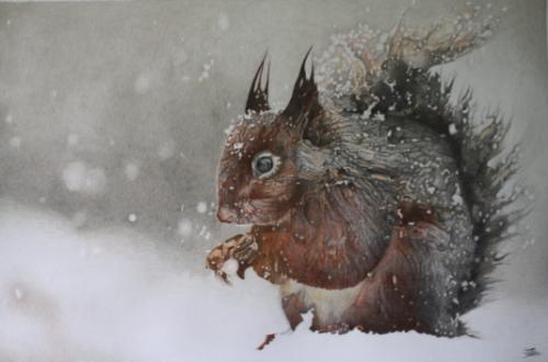 Red Squirrel in the Snow. by Simon-Removed - Use the 'Create Similar' button to commission an artist to create your own artwork.