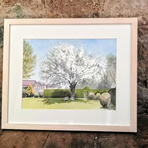 Wild Pear in Blossom by Judith - Use the 'Create Similar' button to commission an artist to create your own artwork.