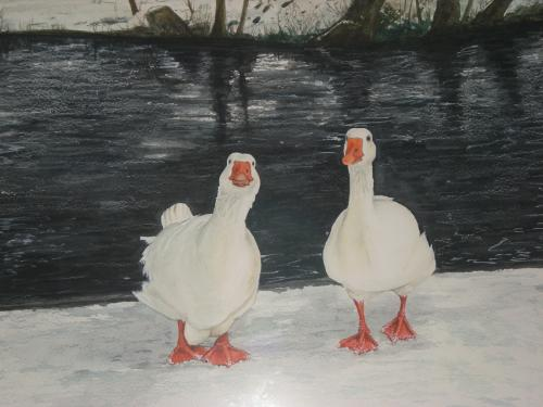 Artwork Geese In January Freeze