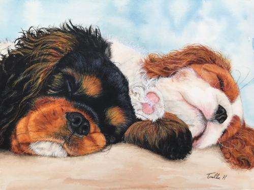 Artwork Sleeping Cavalier Puppies