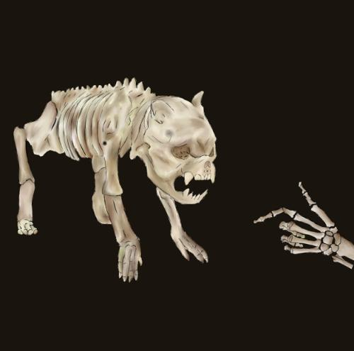 Artwork Dog skeleton