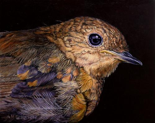 Artwork Baby Robin