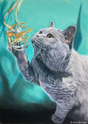 Artwork Domestic British Shorthair playing with tinsel