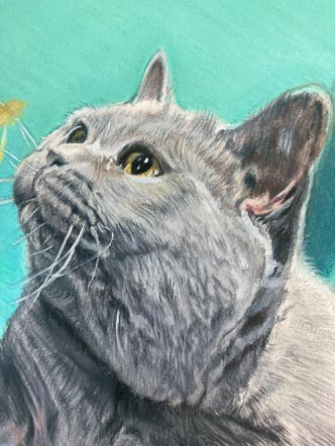 Domestic British Shorthair playing with tinsel by AnnieH - Use the 'Create Similar' button to commission an artist to create your own artwork.