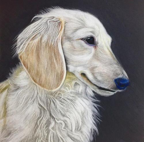 Artwork Neena Da Weiner Dog