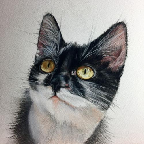 Bessie by AnnieH - Use the 'Create Similar' button to commission an artist to create your own artwork.