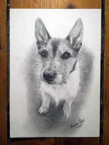 Artwork Titch the dog