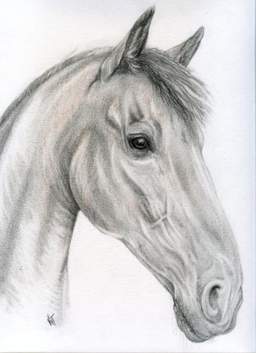 Artwork 'Viscount'