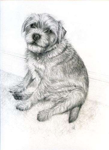 Artwork `Ted`
