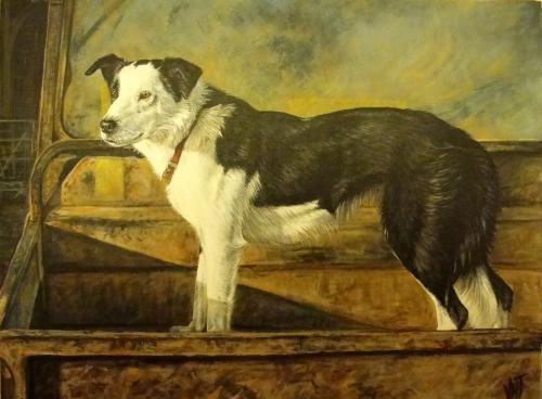 Artwork Working Collie