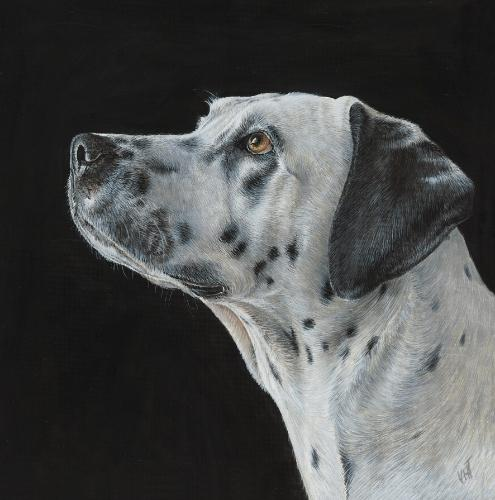 Cali the Dalmatian. by Vicky - Use the 'Create Similar' button to commission an artist to create your own artwork.