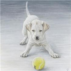 Artwork English Pointer puppy 'George'