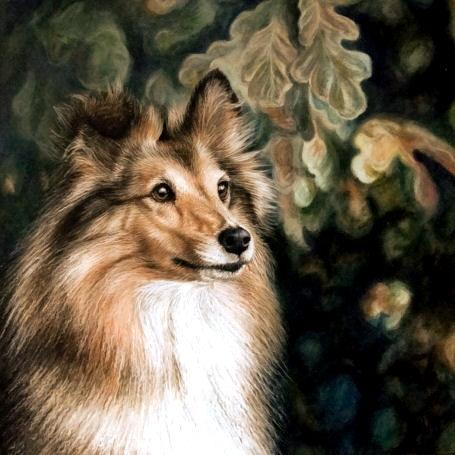 Artwork Sheltie