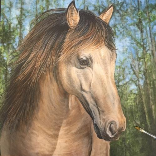 Artwork 'Rock'  Rocky Mountain Stallion