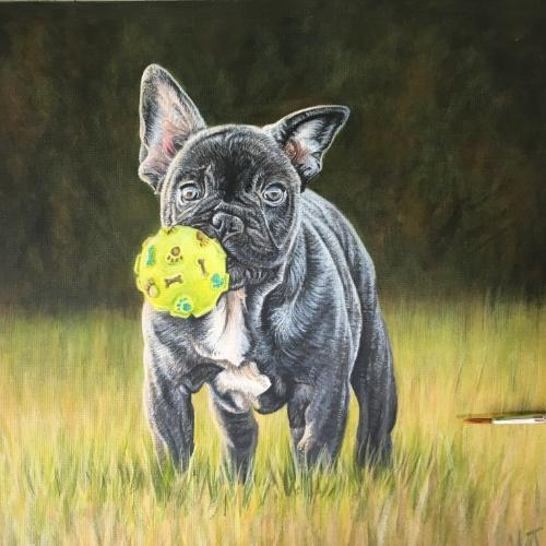 Artwork Boston Terrier Pup