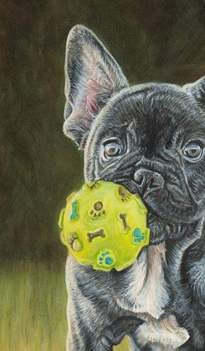 Boston Terrier Pup with Ball by Vicky - Use the 'Create Similar' button to commission an artist to create your own artwork.