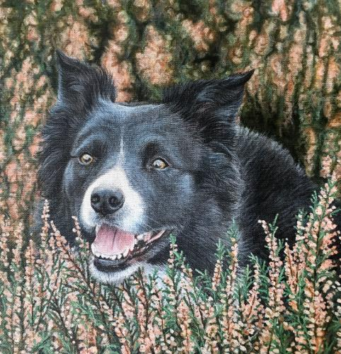 Artwork Border Collie