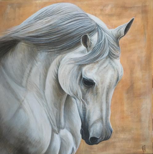 Artwork Grey Stallion