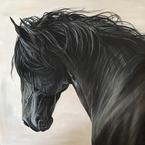 Artwork Black Stallion