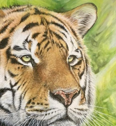 Tiger by Vicky - Use the 'Create Similar' button to commission an artist to create your own artwork.