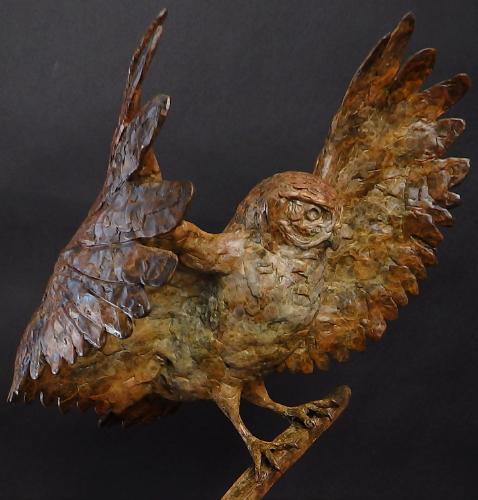 Artwork Owl Landing