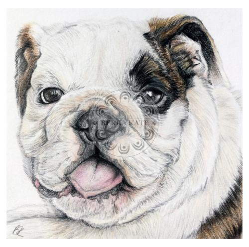 Artwork Bulldog Puppy