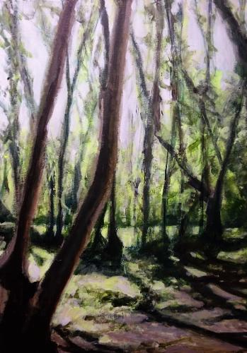 Artwork Woodland Light in Spring