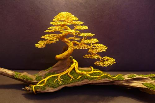 #24 - A gold 'informal upright' on driftwood by Steve - Use the 'Create Similar' button to commission an artist to create your own artwork.