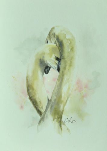 Artwork Two Swans. Original watercolour painting.