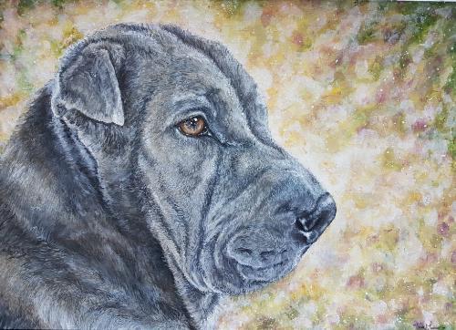 Artwork Sharpei Dog