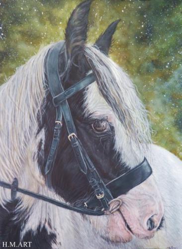 Artwork Piebald Irish Cob Portrait