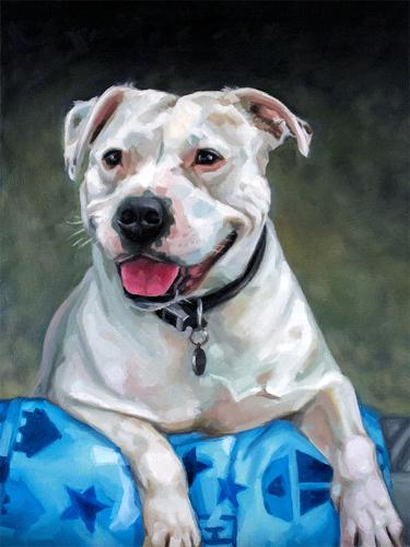 Artwork Boo the Staffordshire terrier