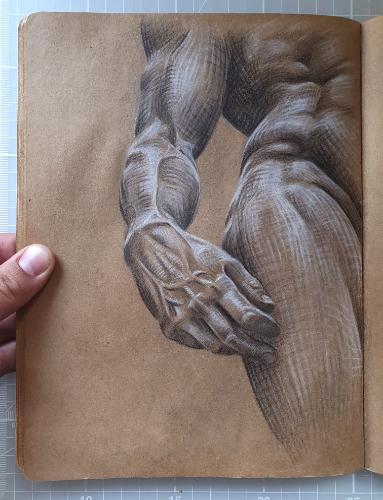 Artwork Statue of David study