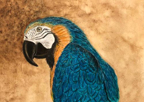 Artwork Beaks the Macaw