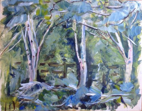 Artwork Birch and Pine Grove