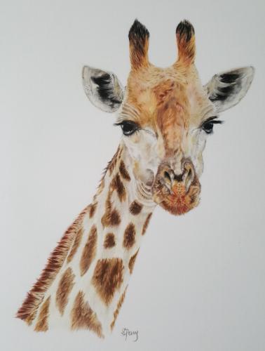 Artwork Giraffe