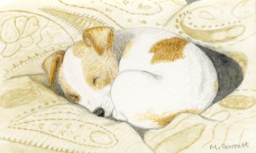 Artwork 'Sleeping pup', watercolour minaiture on paper
