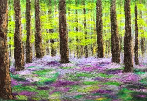 Artwork Bluebell woods 5c