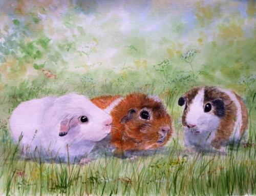 Artwork GUINEA PIGS