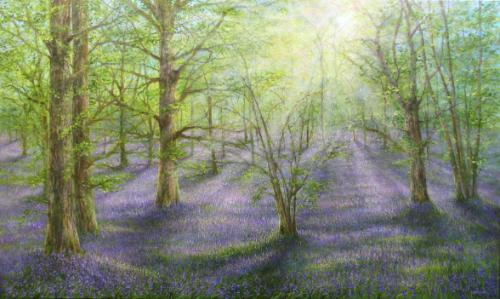 Bluebells by Stella