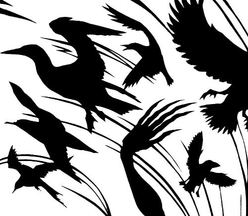 BirdBook IV cover by Lois - Use the 'Create Similar' button to commission an artist to create your own artwork.