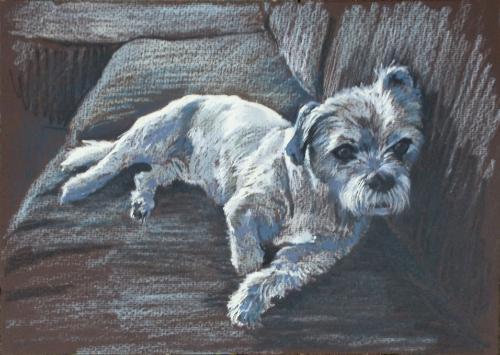 Artwork Dog Portrait Commission