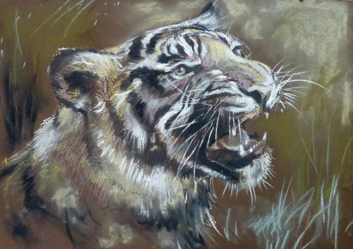 Artwork Tiger Snarling (Mixed Media)