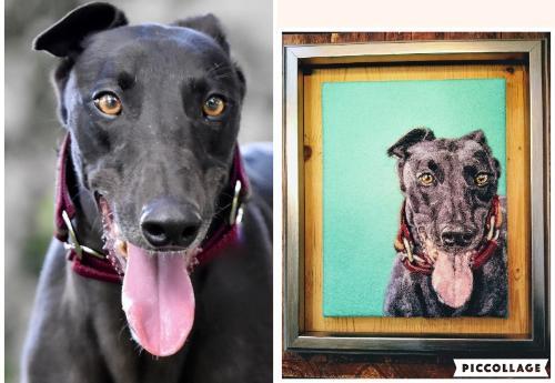 Artwork Shiny Black Greyhound Needle Felt Portrait