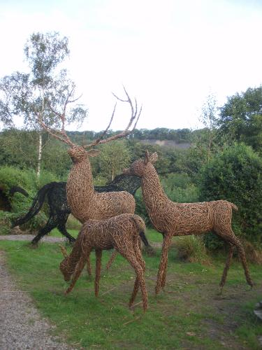 Deer Family by Joolz - Use the 'Create Similar' button to commission an artist to create your own artwork.